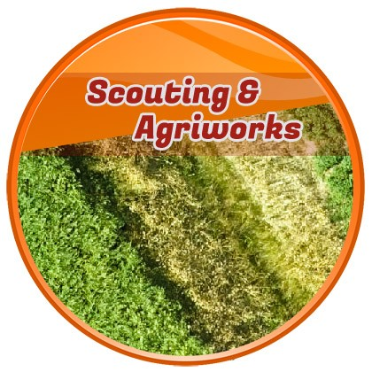 scouting and agriworks drone business solution